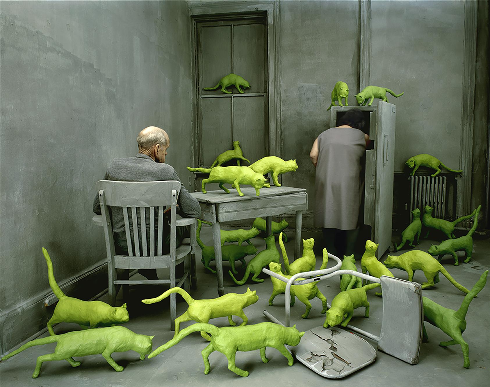 Sandy Skoglund, Radioactive Cats, 1980