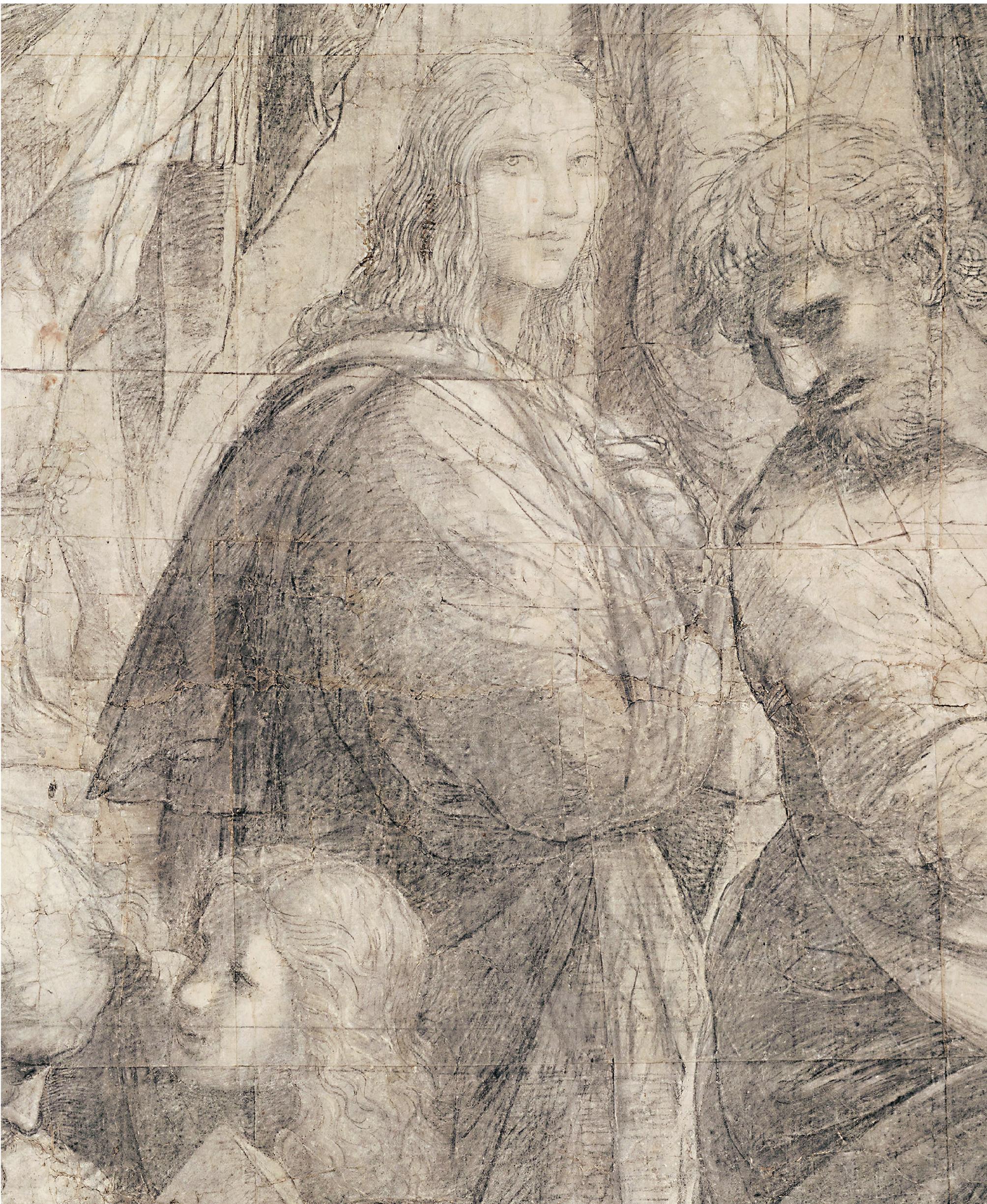 Raffaello Sanzio, Particolare, Cartone preparatorio La scuola di Atene, Pinacoteca Ambrosiana, Milano